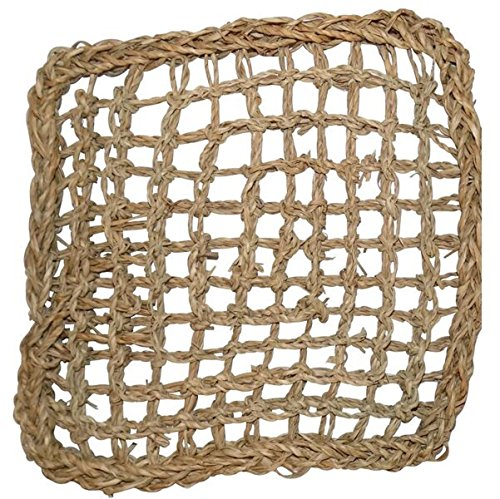 Sea Grass Climbing Net Square For Birds (13 inch by 13 inch) by Eco Animal Pet Products (Image #1)