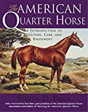 img - for The American Quarter Horse: An Introduction to Selection, Care, and Enjoyment book / textbook / text book