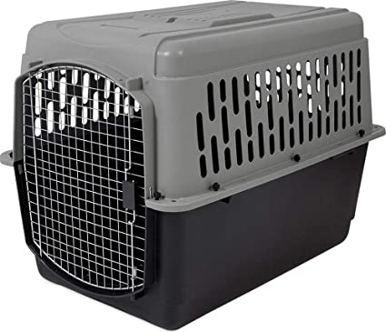 Amazon.com   Aspen Pet Porter Heavy-Duty Pet Carrier with Secure ... d145ce37ff60