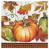 Creative Converting 324043 Party Creations Paper Napkin, Harvest Plenty