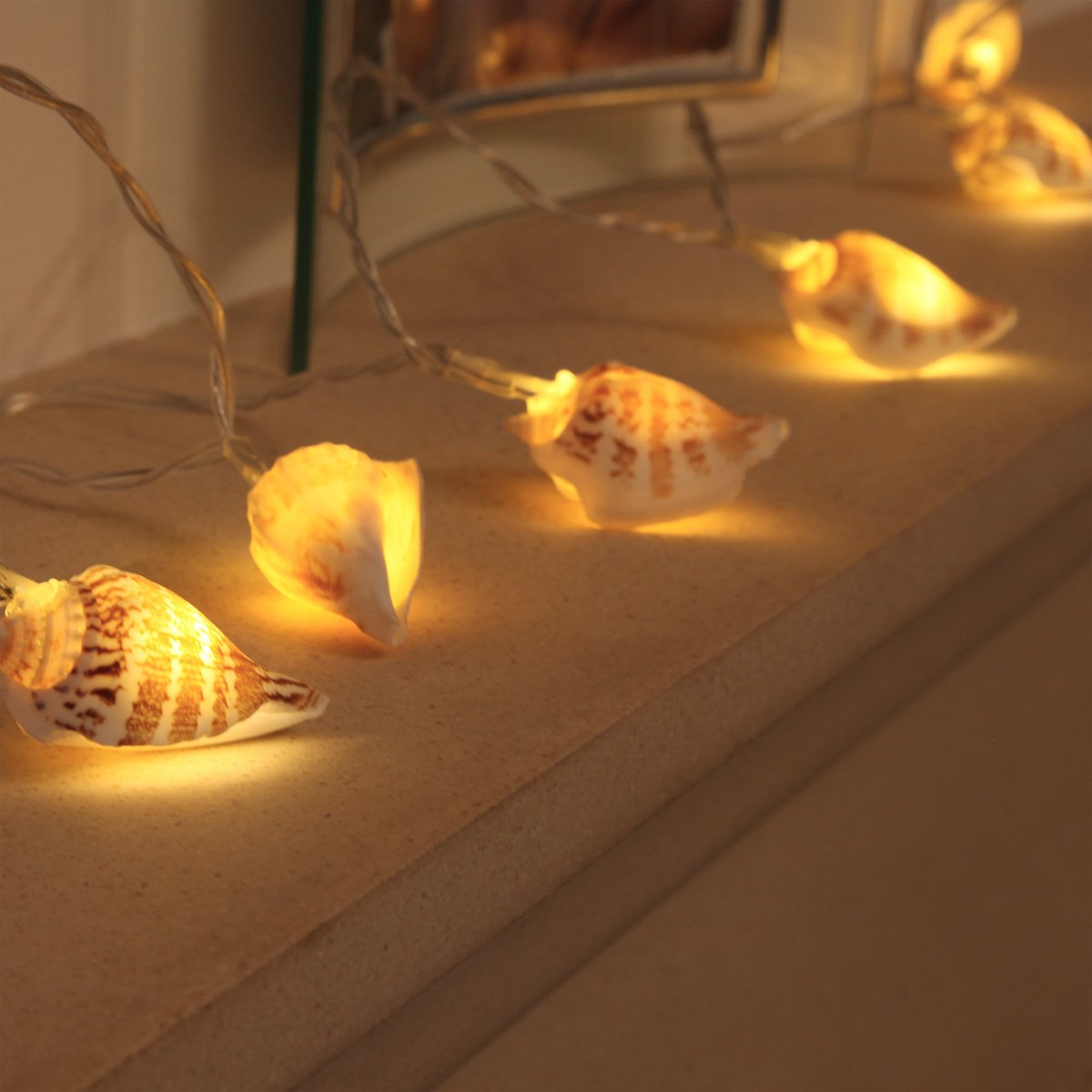 Sea shell fairy lights battery operated 10 warm white leds sea shell fairy lights battery operated 10 warm white leds real shells timer by festive lights amazon kitchen home mozeypictures Gallery