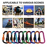 10Pack Carabiner Keychain,Aluminum Carabiner D Shape Buckle Pack,Keychain Clip,Spring Snap Key Chain Clip,loaded Carrying Locking Gear for Everyday Life Uses, Outdoor Activity