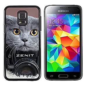 Stuss Case / Funda Carcasa protectora - LINDO BRITISH FOTOGRAFÍA shorthair gato - Samsung Galaxy S5 Mini, SM-G800