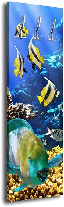 Wandmotiv24 Porte Manteau Avec Design Sous L Eau Monde G009
