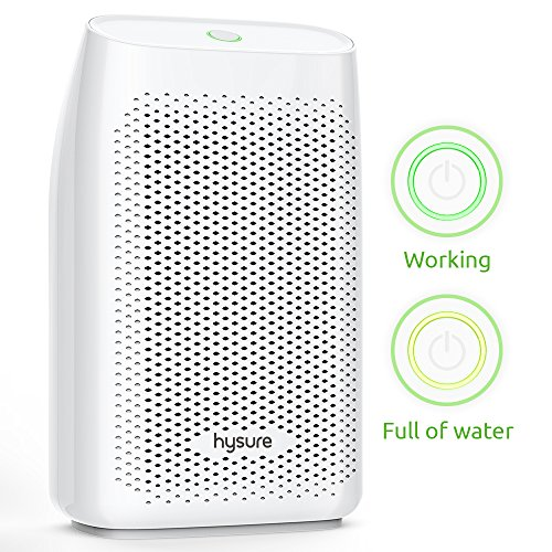 Hysure Portable Mini Dehumidifier 2200 Cubic Feet Electric Safe Dehumidifier for Bedroom Home Crawl Space Bathroo RV Baby Room White... (700 ml)