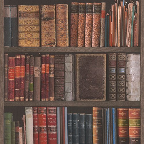 Rasch Library Books Wallpaper - 934809