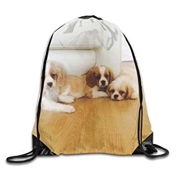 Amazon.com: HUVATT - Mochila con cordón, diseño de cachorros ...