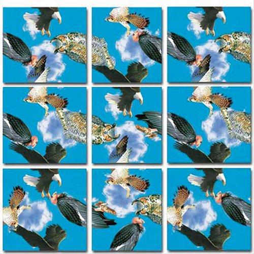 B.Dazzle Scramble Squares: Birds of ()