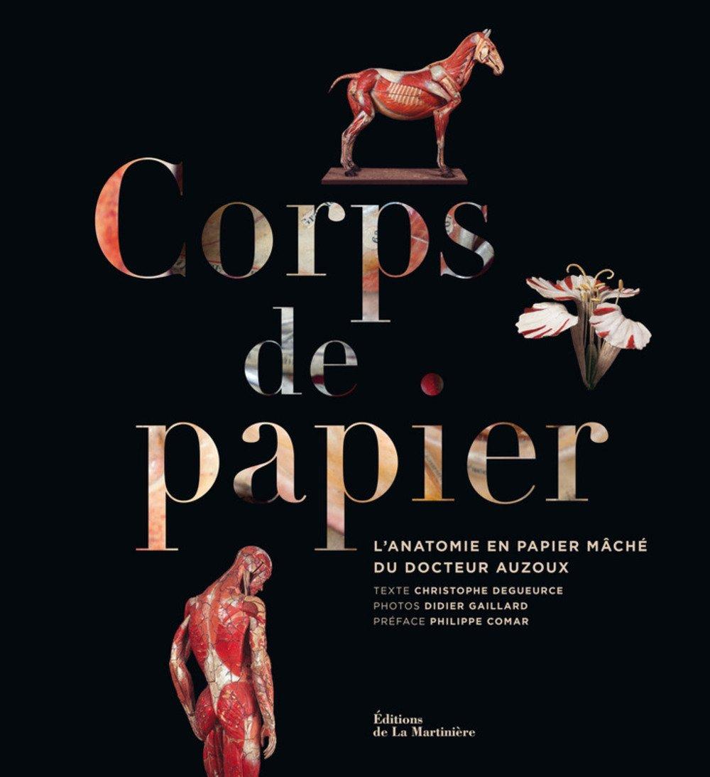 """Résultat de recherche d'images pour """"christophe degueurce  corps de papier"""""""
