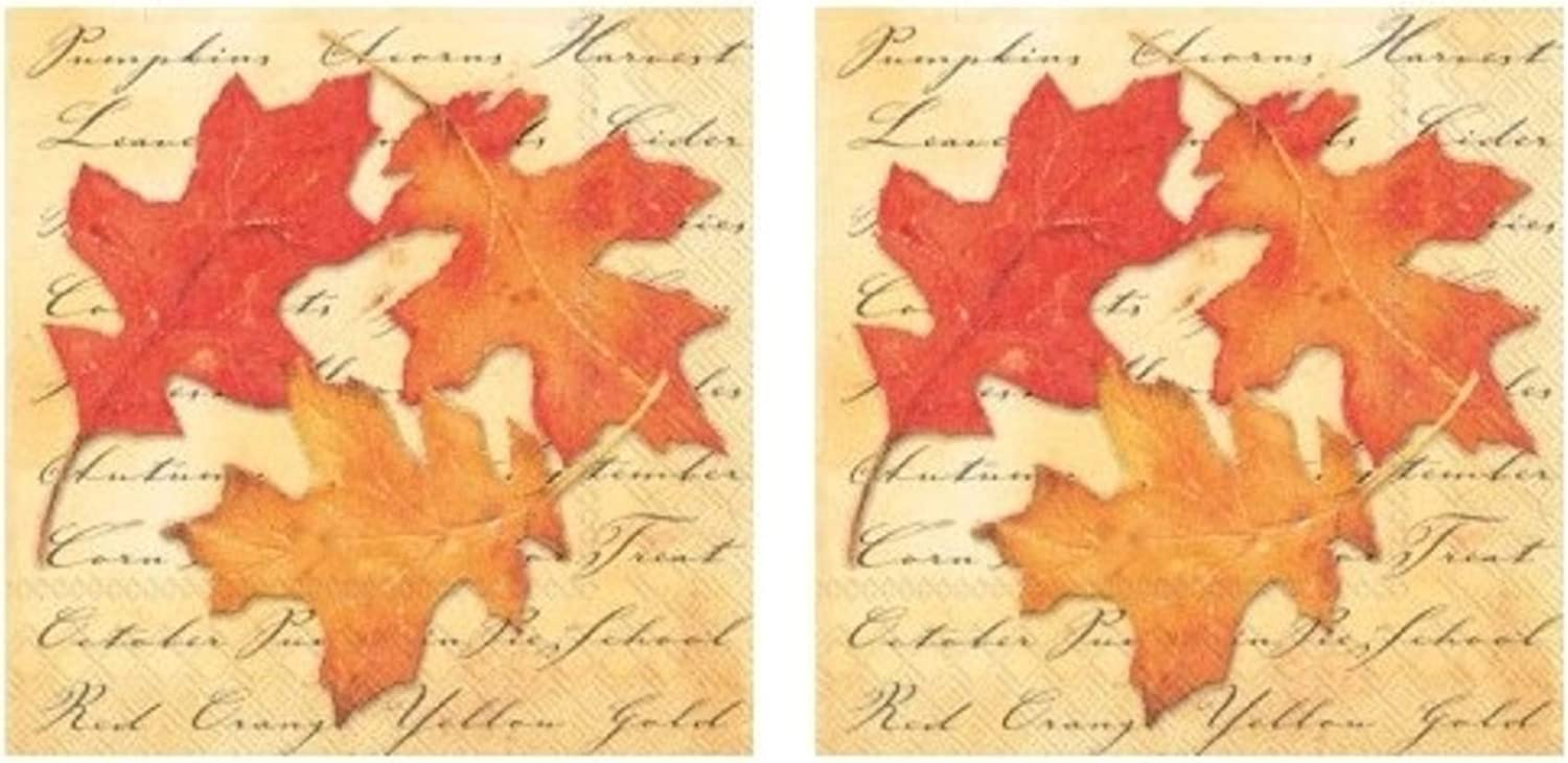 Autumn Splendor 3-Ply Paper Cocktail Napkins 40-Count, Fall Leaves Decor Barware Beverage Serviettes