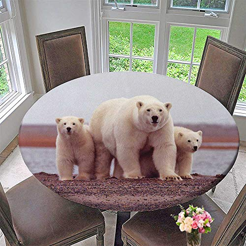 (Mikihome Picnic Circle Table Cloths Three White Polar Bears for Family Dinners or Gatherings 55