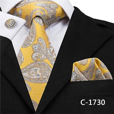 CNBB Juego De Corbatas Hi-Tie para Hombre Corbatas Y Pañuelos De ...