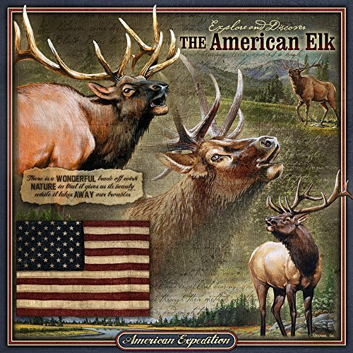 American Expedition TNSQ-104 Square Tin Art Sign, Elk, Multi-Color ()