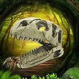 Motina Dinosaur Skull Resin Ornament