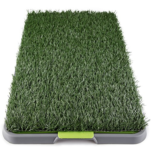 dog grass potty pad - 2