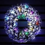 Multi Color LED Fiber Optic Christmas Wreath (24in, white + multi colore)