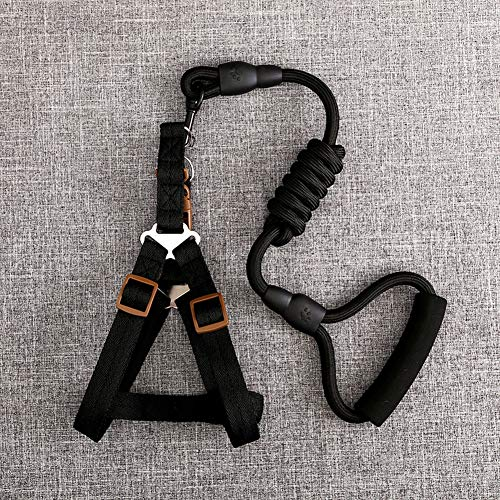 Dog Leash Harness, Pet Traction Rope Chest Strap Dog Leash Harness Set Rescue No-Pulling Harness Dog Collar Adjustable Training Lead Set Chain for Training Walking Running,Black,M