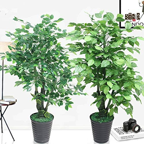 Artificial Plants Plastics 160cm Jinlong Trees Potted Greenery Planting Artificial Tree Large Bonsai Home Decoration Indoor 1 6m Without Pot Home Decor Artificial Dried Flora