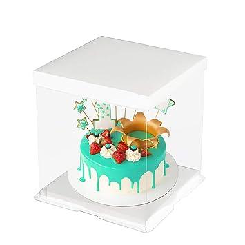 Amazon.com: CODOHI 6 paquetes de plástico transparente para ...