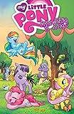My Little Pony: Friendship Is Magic Vol. 1 (English Edition)