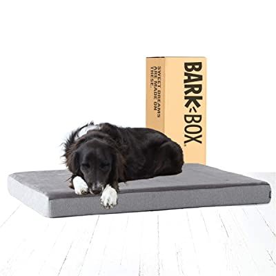Barkbox Memory Foam Platform Dog Bed