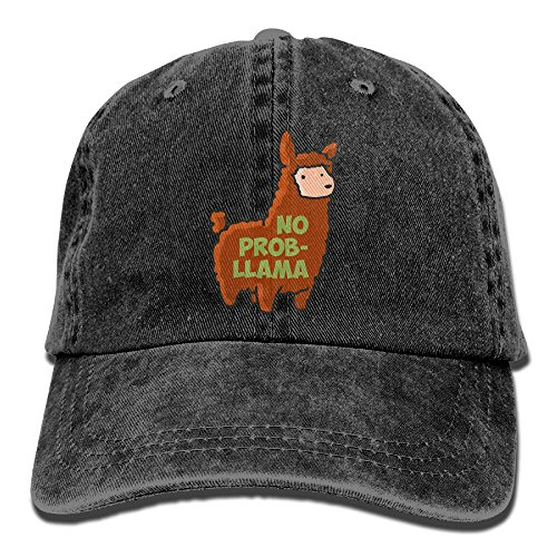 LLTL No Prob-Llama Washed Retro Cowboy Hat