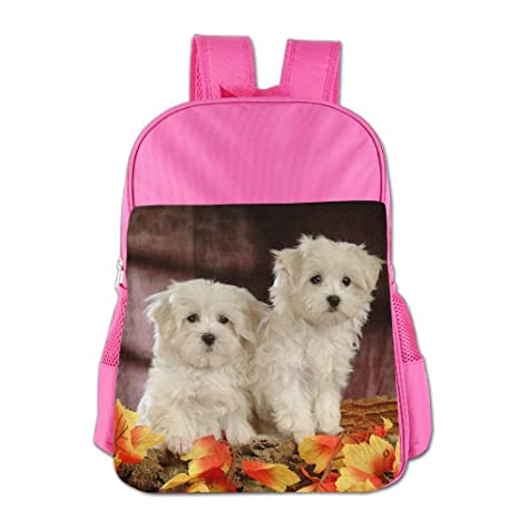 Amazon.com: DFADS Child School Backpack Puppy