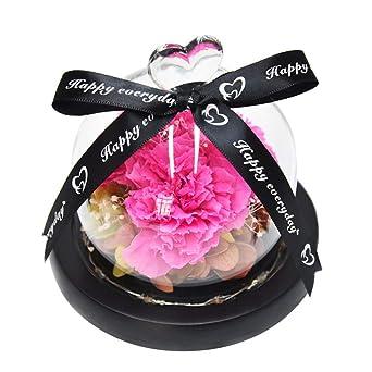Mobestech - Fiore Eterno en la cúpula de cristal, mesa de casa ...