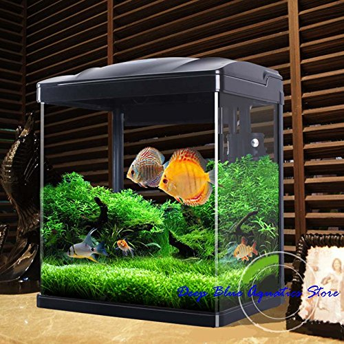Perfect NEW Fish Tank Aquarium Kit with L.E.D Lighting and w/ Filter 5-Gallons