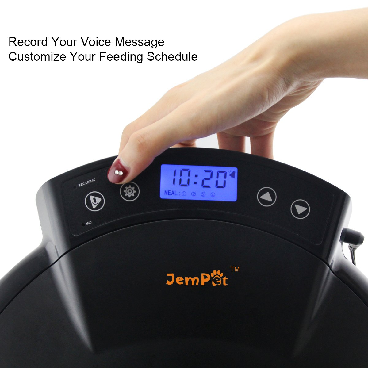 JEMPET Automatic Pet Feeder Cats Dogs, 5 Meal Trays Dry Wet Food, Auto Pet Food Dispenser Programmed Timer Voice Recording Function, 5 x 240ml by JEMPET (Image #2)