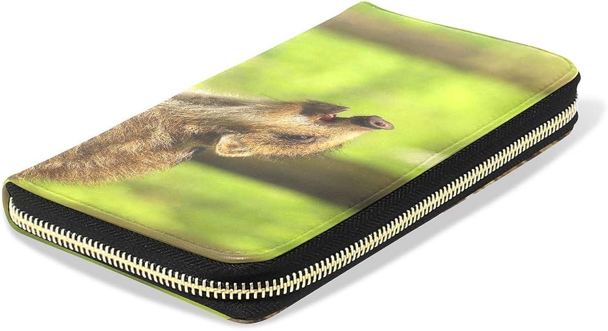 Purse For Kids Girls Baby Wild Boar Calling Long Passport Clutch Purses Zipper Wallet Case Handbag Money Bag For Lady Women Girl Cute Wallets For Women