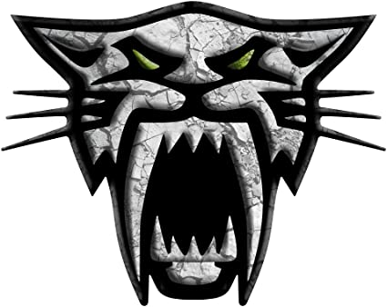 """BLACK AND WHITE ARCT-3-2 12/"""" ARCTIC CAT SKULL SNOWMOBILE DECAL STICKER"""