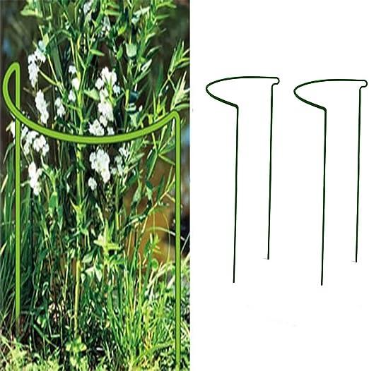 Yissma Anillos de Soporte de Acero Plantas, Anillo de Hierro de Planta para el jardín, para Tomates, Tallos de Flores, para Plantas Verticales, Juego de 2 25 x 40 cm: Amazon.es: Hogar