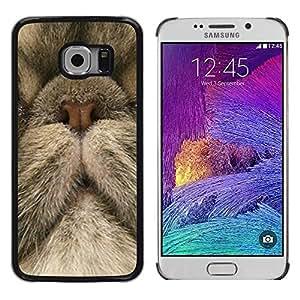 Be Good Phone Accessory // Dura Cáscara cubierta Protectora Caso Carcasa Funda de Protección para Samsung Galaxy S6 EDGE SM-G925 // Persian Cat Nose Cute Kitten Kitty