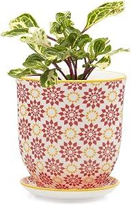 Chive - Big Liberte, Large Succulent and Cactus Planter Pot - 4.25