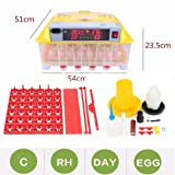 110V 56 Digital Clear Egg Incubator Hatcher