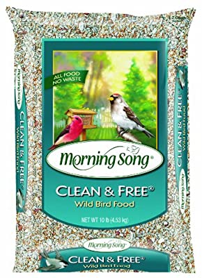 Morning Song Clean and Free