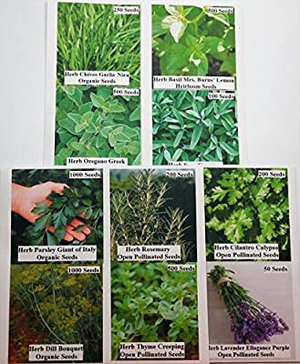 David's Garden Seeds Culinary Herb Seed Collection P971GH 4,000 plus Seeds (Open Pollinated, Heirloom, Organic) Set of 10 Packs