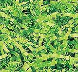Custom & Unique {10 Pound} of Crinkle Cut Shredded Gift Basket Filler Paper w/ Neon Bright Simple Grass Inspired Seasonal Fun Springtime Festive Saint Patrick's Day Design (Light Green)
