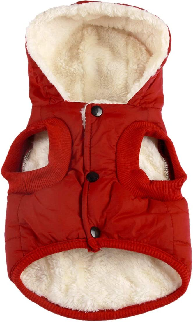 JoyDaog - Sudadera con capucha para perro (forro polar, algodón y forro de algodón)