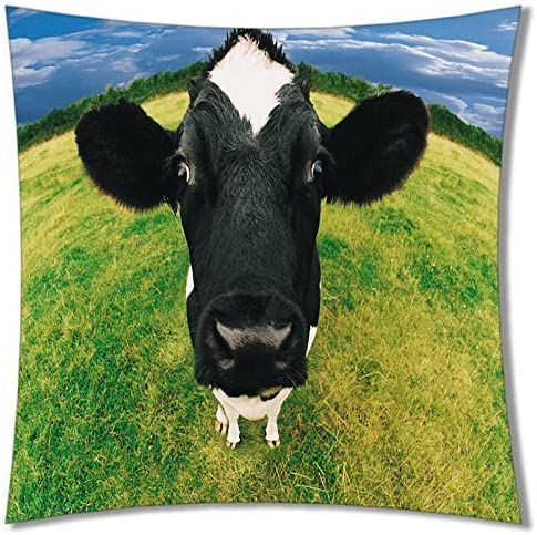 A-SLLE Square Unique Decorative Throw Pillow Case Cushion Cover Cow Pasture Meadow Grassland 18 X 18 Two Sides Printed 55
