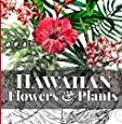 Hawaiian Flowers & Plants: Relaxing Coloring Therapy for Adults (Island Color) (Volume 1)