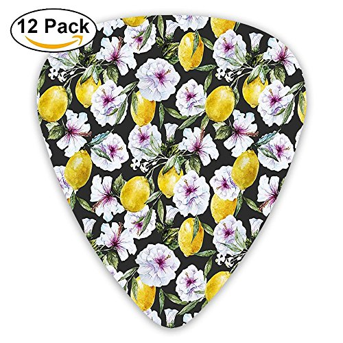 Newfood Ss Tropical Hibiscus Blossoms Petals With Lemons Nature Harvest Spring Essence Guitar Picks 12/Pack Set ()