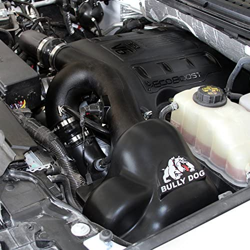 Cold Air Intake Ford 3.5L EcoBoost F150 Gas 2011 RFI 51202 Bully Dog
