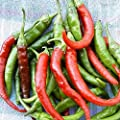 Long Slim Cayenne Hot Pepper Garden Seeds - Non-GMO, Heirloom Vegetable Gardening Seeds