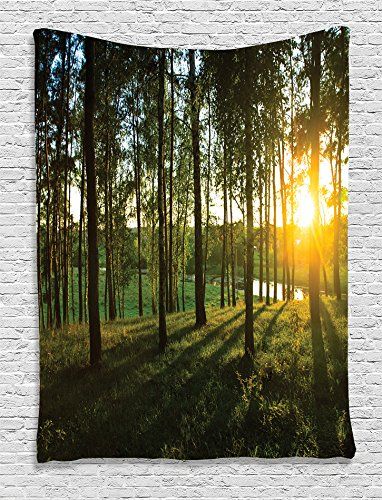 Ambesonne Farm House Decor Collection, Scene of Sunset in the Scattered Woods at Autumn and River Comes into View Print, Bedroom Living Room Dorm Wall Hanging Tapestry, Olive Green Yellow