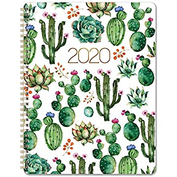 Amazon.com : Classic Large 2019-2020 Day Per Page Spiral ...