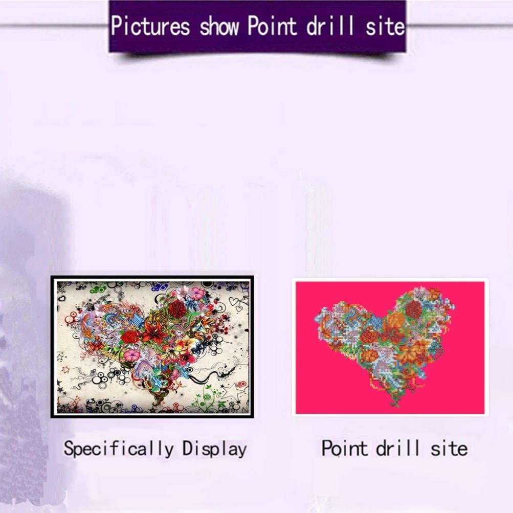 5D Diamond Painting Kits,Lavany 5D DIY Diamond Paints By Number Kits Embroidery Rhinestone Pasted Wall Decor,Stamped Cross Stitch Kits Birds✿