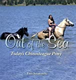 Out Of The Sea: Today's Chincoteague Pony