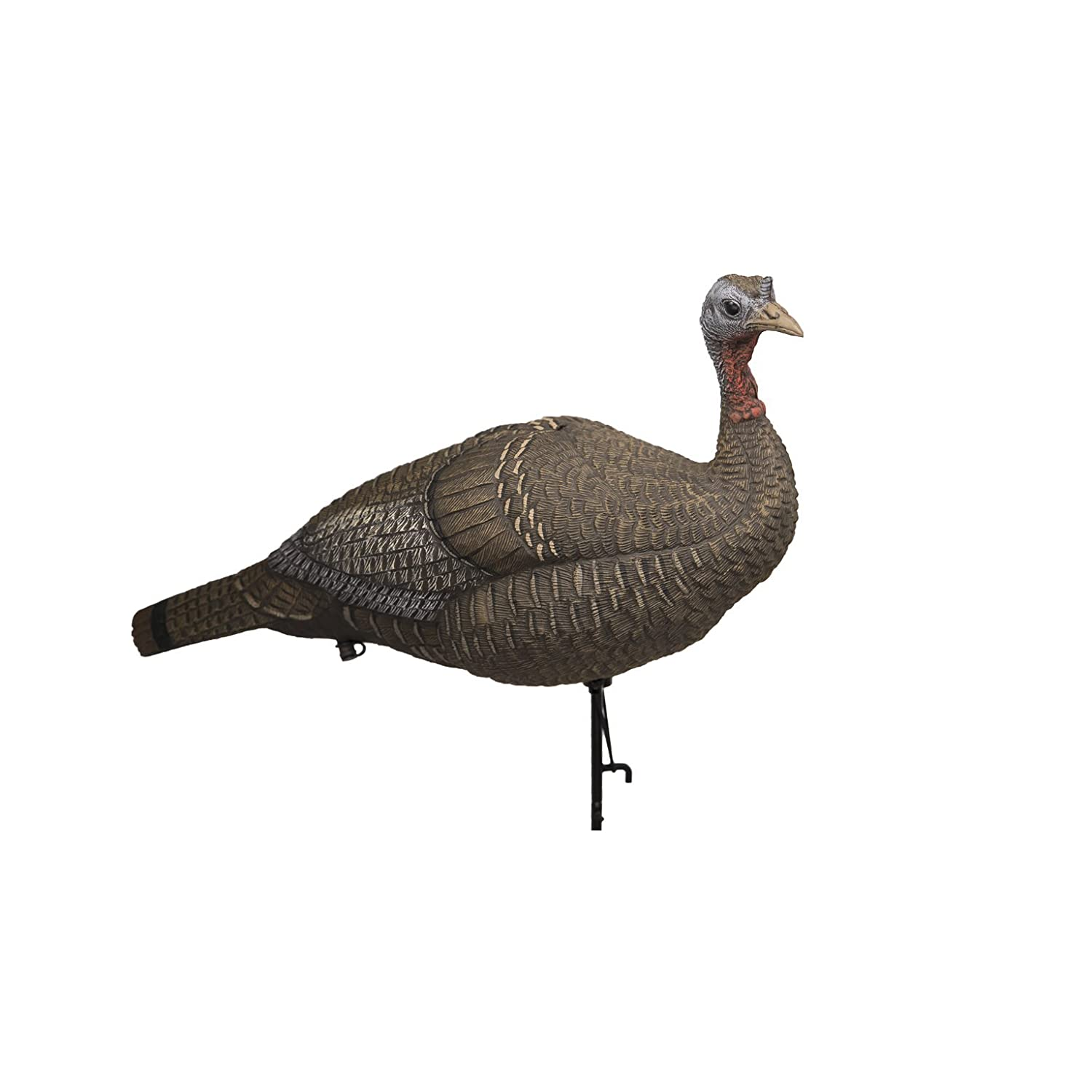 Lucky Duck Lucky HD Collapsible Hen Turkey Decoy Edge Innovative Hunting 50117-7